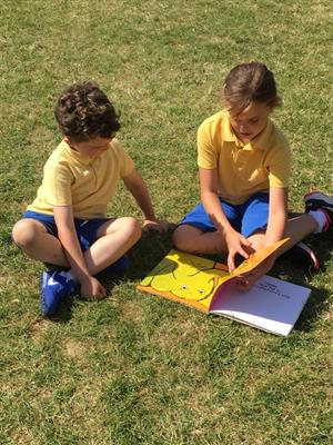 Shared Reading in the Sun!